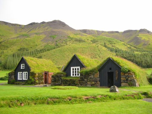 «Зелений» дах   альтернатива озеленення саду