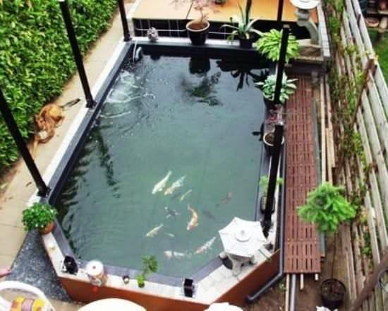Как сделать пруд на даче своими руками с рыбой