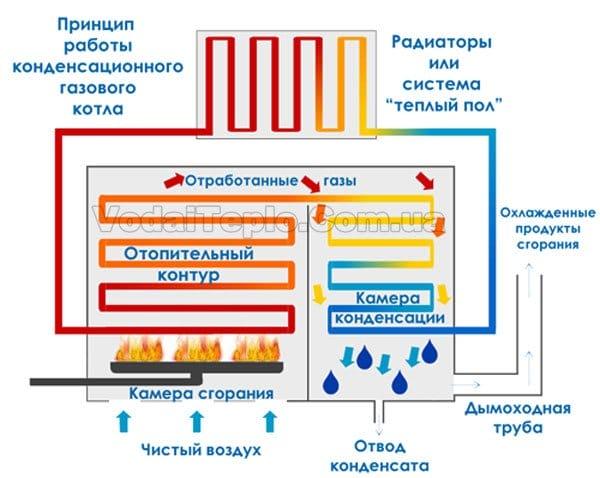 Двухконтурный газовый котел принцип и схема работы