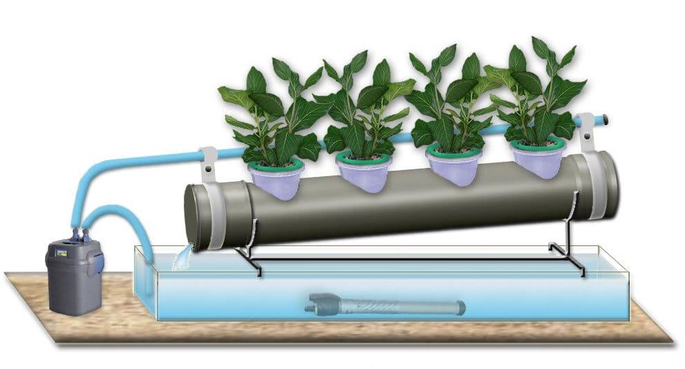 Оборудование гидропоника для выращивания зелени 15