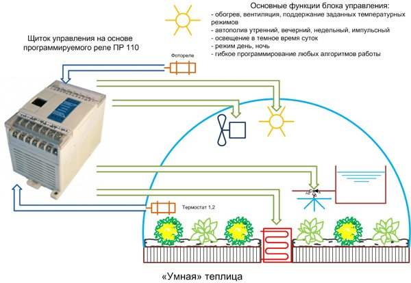 Правильный микроклимат: температура и влажность в теплице