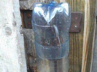 таком защита замка от дождя рассмотреть описание сорта