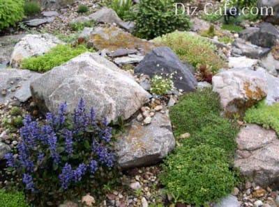 Вибираємо відповідні камені для альпійської гірки: яким породам віддати перевагу?
