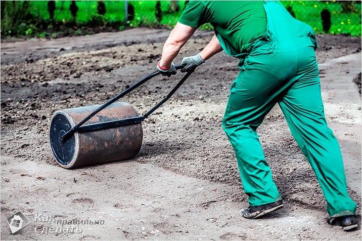 Как засеять газон на даче своими руками 379