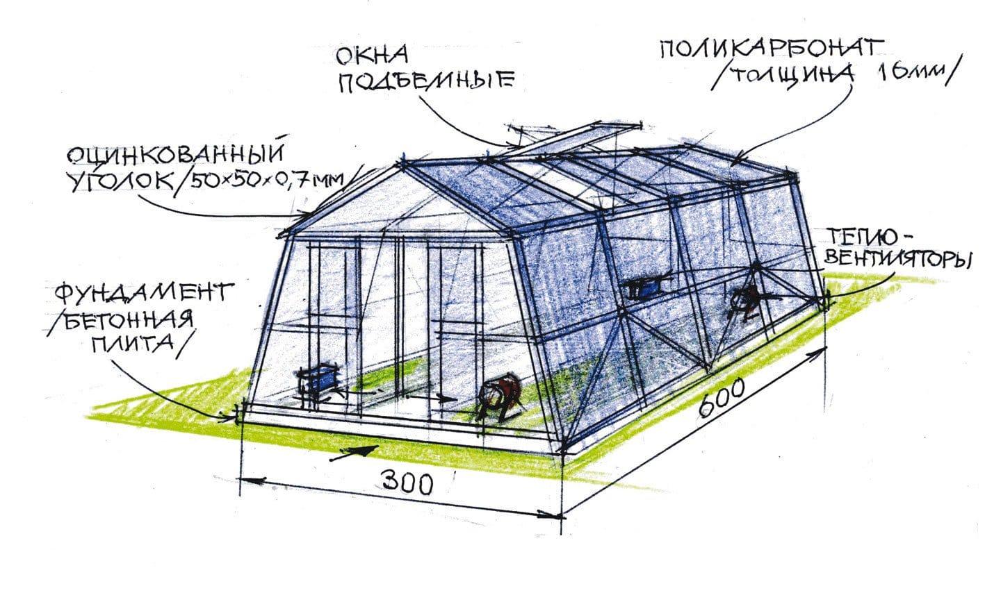 Двухскатная теплица из поликарбоната своими руками чертеж