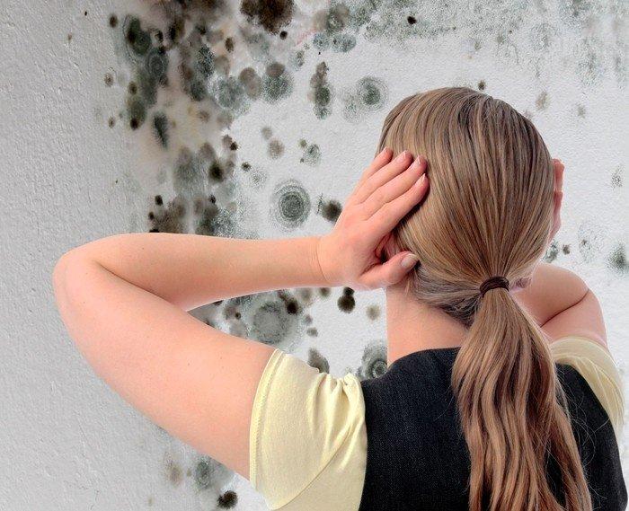 Цвіль у ванній – варто побоюватися і як з нею боротися?