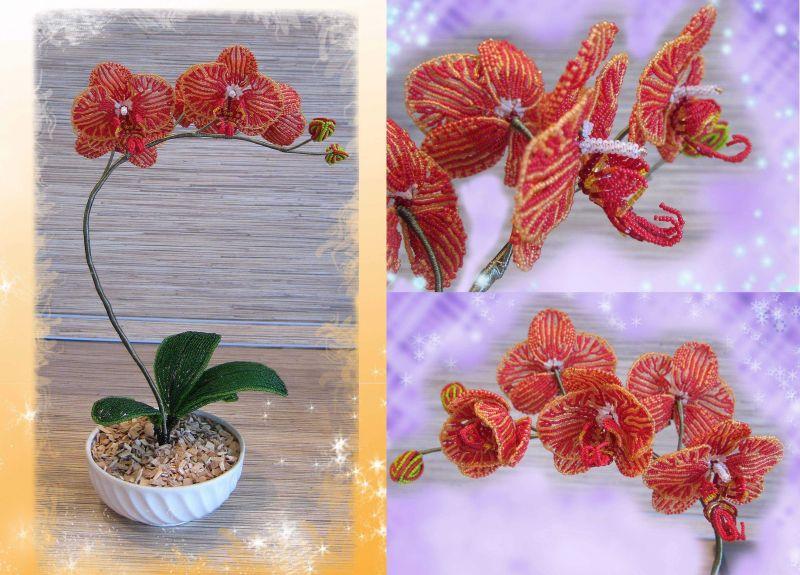 Орхідея з бісеру схема