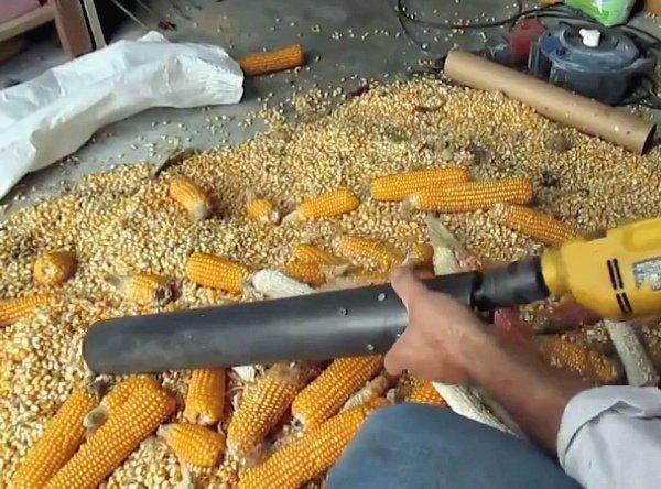 Как сделать зерна для кукурузы 488