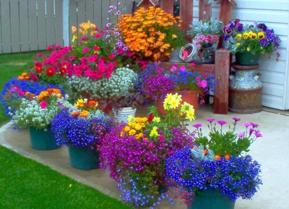 Красота для сада своими руками 78