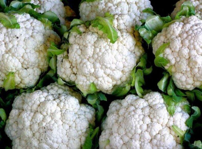 Кращі сорти цвітної капусти для відкритого ґрунту: фото з назвами